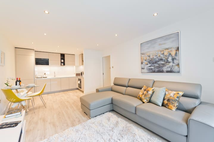 Fabulous Temple Bar Apartment in City Centre