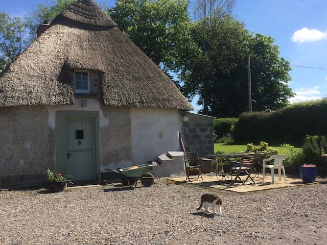 Irish Thatch country cottage restored 2 dbl rooms