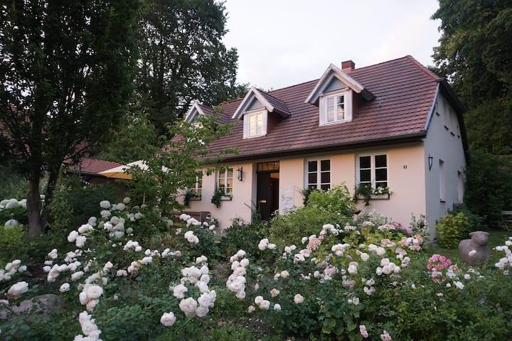 Doppelzimmer mit Seeblick - am Schloßgarten,