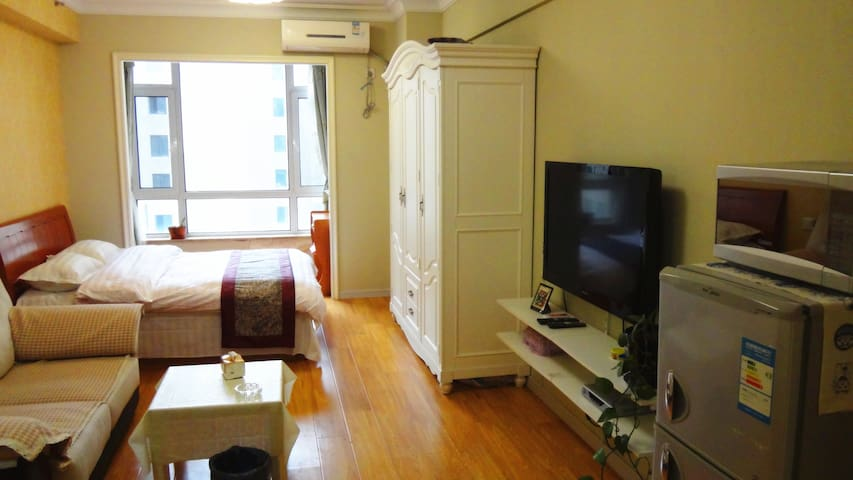 左岸经典丽都酒店式公寓 - Dalian - Apartament
