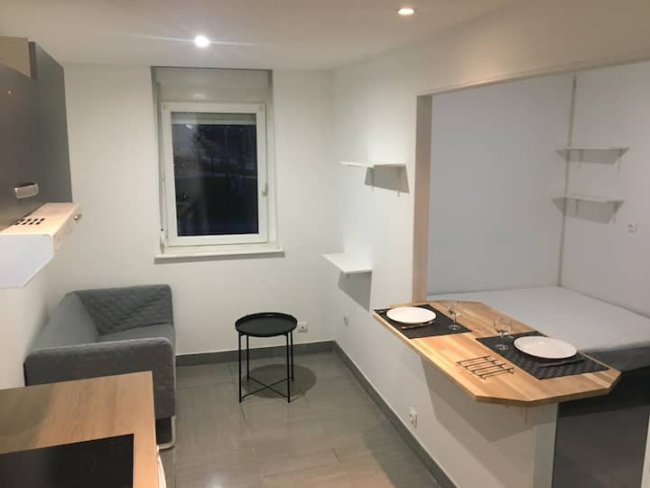 Grand Studio Cosy 20 m2 (A2)