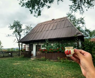 Traditional house in Maramures,Transylvania