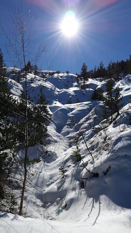 Ballade en ski de fond, site du Fanget