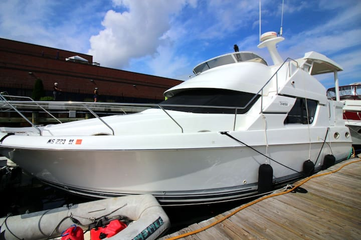 40ft Silverton Motoryacht on Boston Freedom Trail - Boston - Boot
