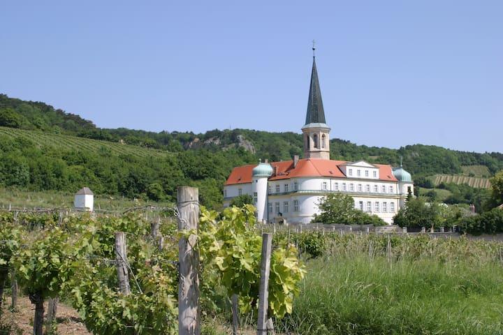 Ein Schloss umgeben von Weinbergen, nahe Wien