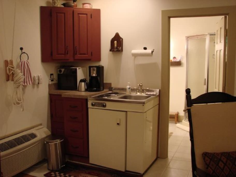 Microwave, coffee pot, fridge, electric 2 burner stove and kitchen sink.