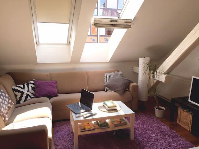 Best apartment in Zagreb :) - Zagreb - Apartment