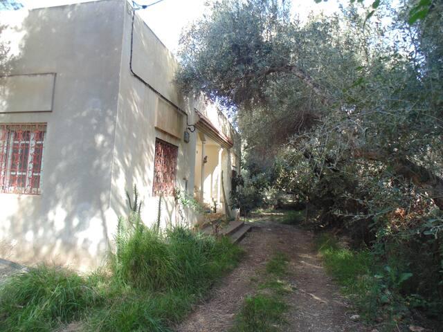 lovely landscape lodging/logement avec nature