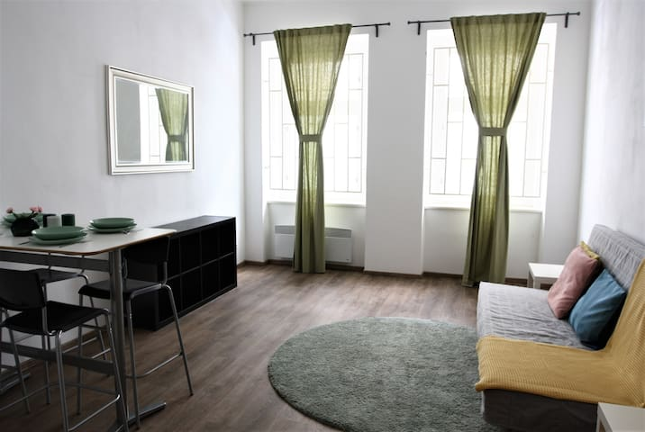 BRAND NEW SPACIOUS FLAT, 11 min to the city center
