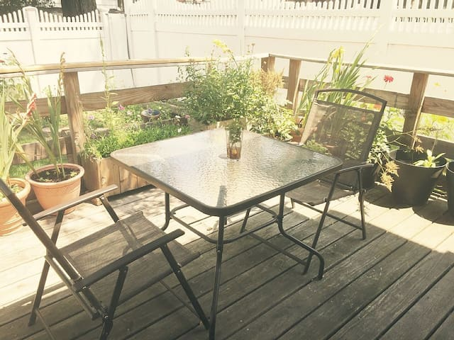 Sunny, Contemporary 1 Bedroom Apt W/ Large Patio