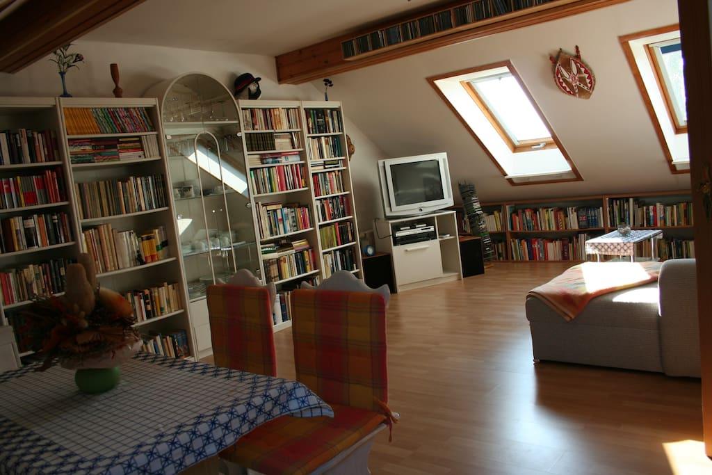 Wohnzimmer - Bücherregal und Doppelbettcouch