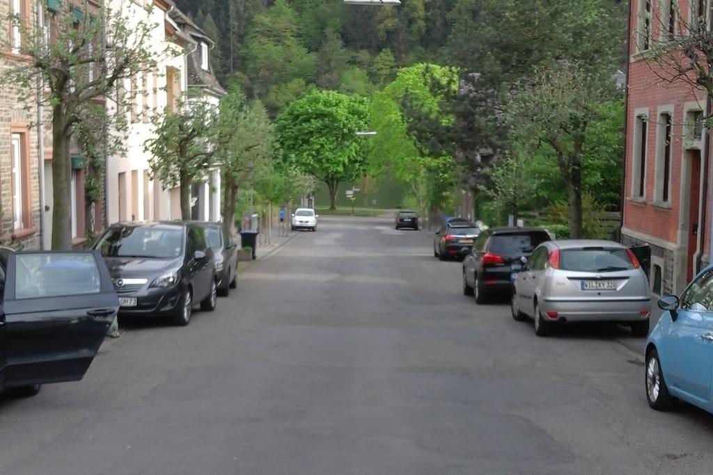 Straße zur Mosel