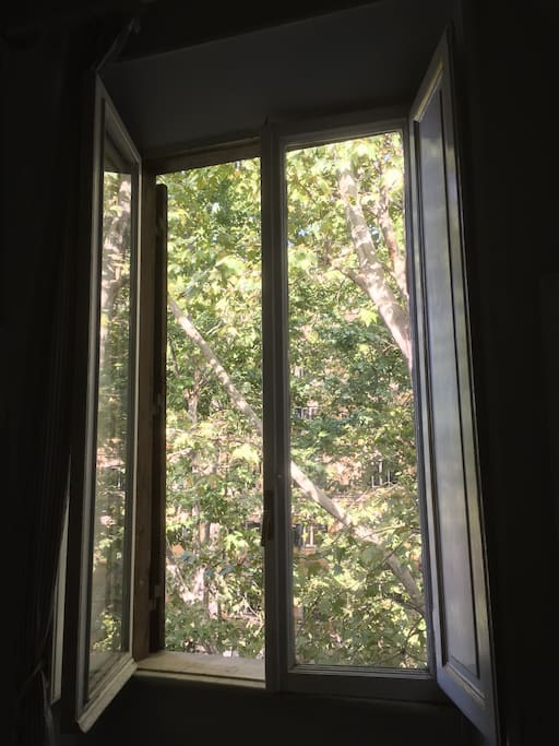 Ampia finestra con vista sul viale