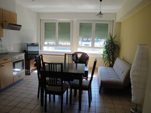 Fully furnished flat at best location - Genève - Flat