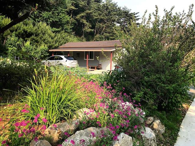 휴식의 정원(A Resting Garden)