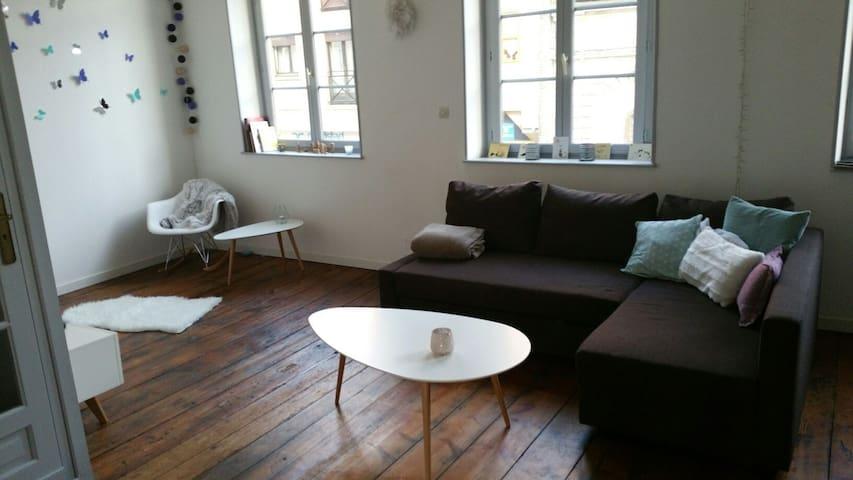 Grand appartement plein de charme, belle terrasse - Saint-Omer - Apartmen