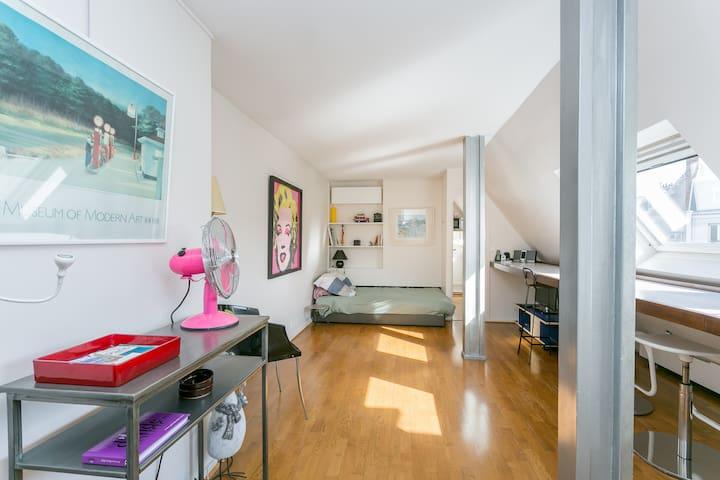 Lovely studio between St-Germain and Montparnasse