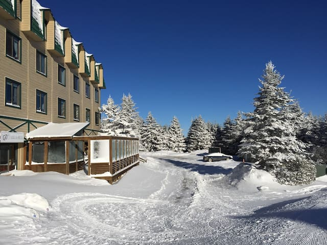 Cozy 1BR at Top of the World - Snowshoe mountain resort - Apartment