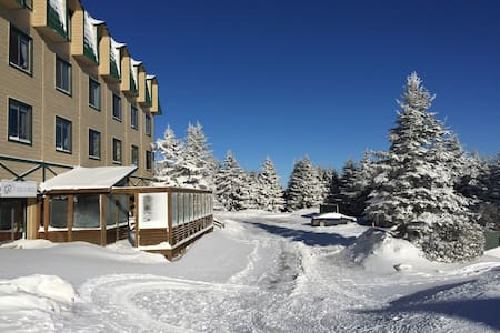 Cozy 1BR at Top of the World - Snowshoe mountain resort