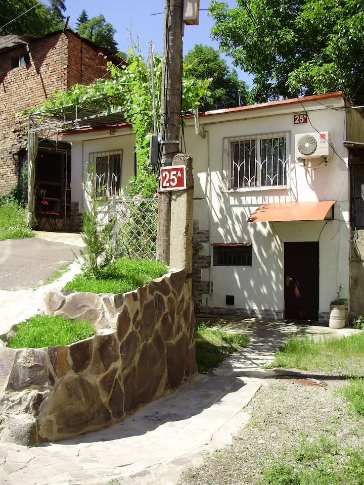 Guesthouse on Erekle 25a(люкс)