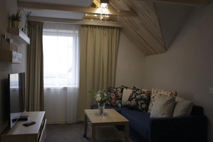 Cozy Apartment in Žaliakalnis 10