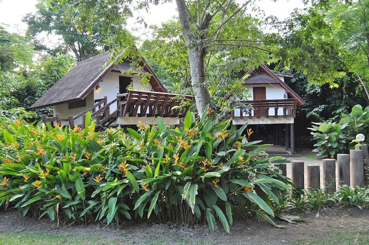 The Jungle House, Khaoyai