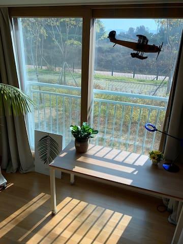 햇살가득 한가로운 창밖 앞마당