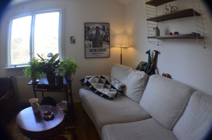 Vindsvåning i lugnt villaområde - centralt - Göteborg - Huoneisto