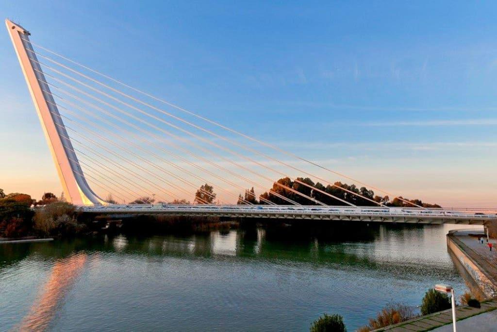 Rio Guadalquivir, Parque Americano y Puente del Alamillo.