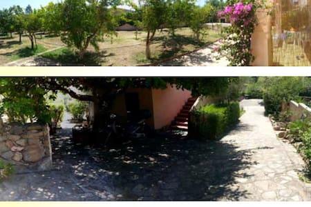 Beach House - Pittulongu