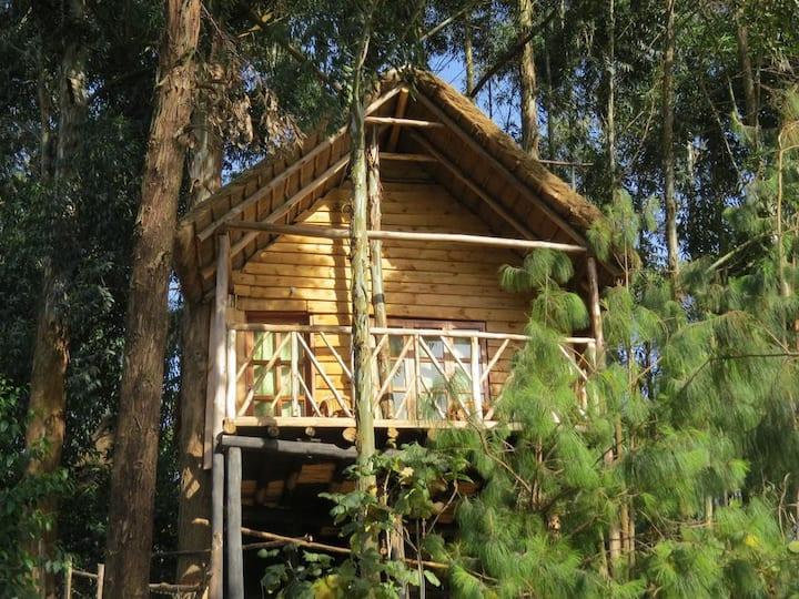 Treehouse En Suite, Itambira Island, Lake Bunyonyi