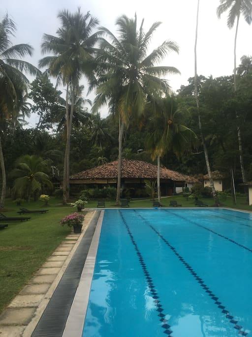 Talalla Pool