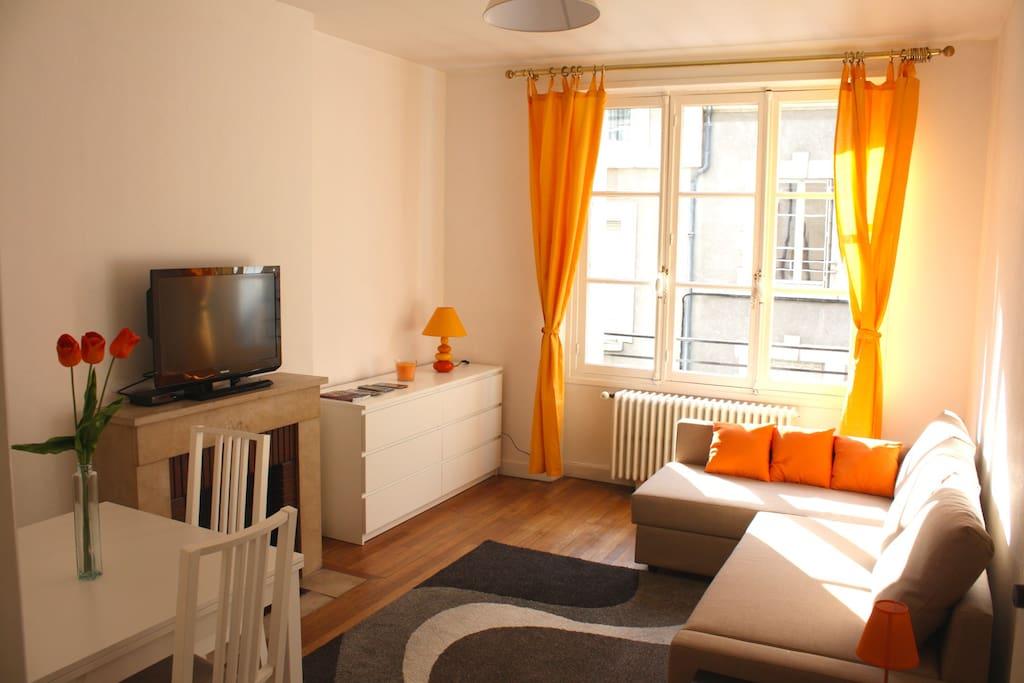 appartement hypercentre louis xii appartements louer blois centre france. Black Bedroom Furniture Sets. Home Design Ideas