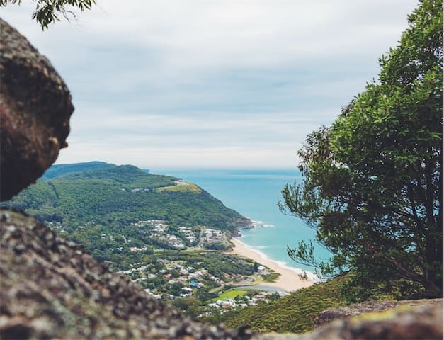 Wodi Wodi bush track, this is the alternative path that will lead you to the top to enjoy stunning coastline views.