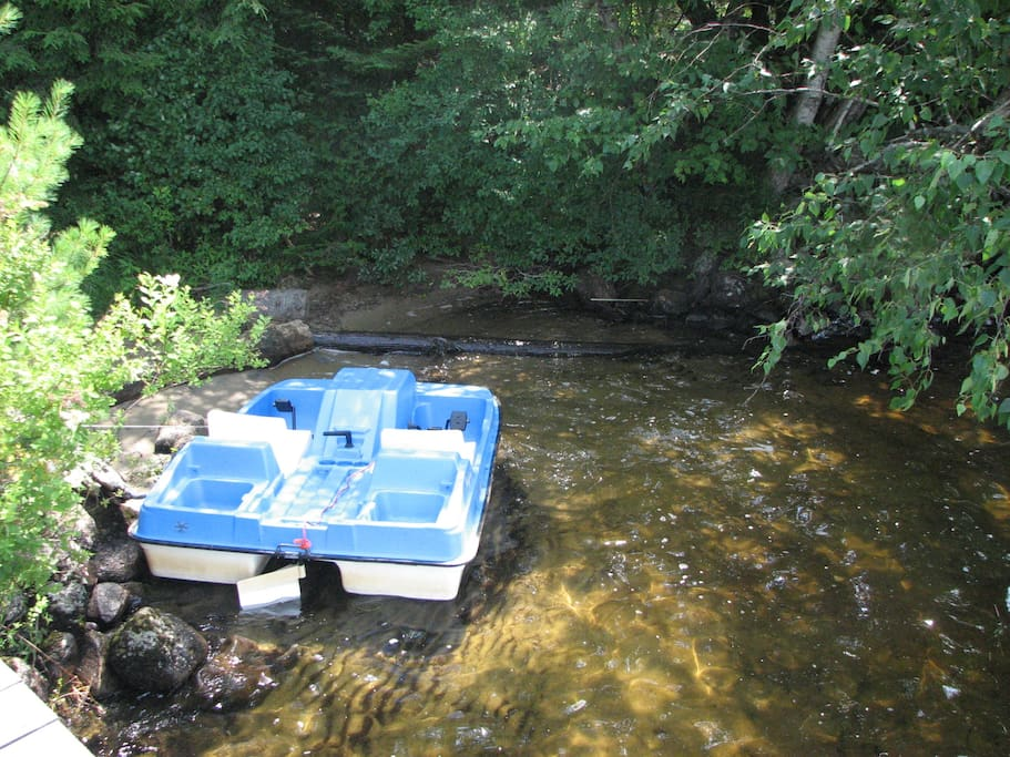 Paddle boat is available for your use