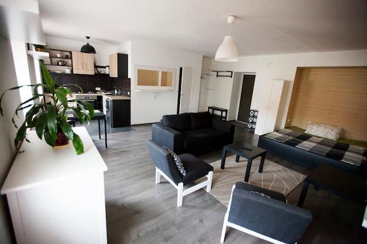 Studio-type apartment in the city center