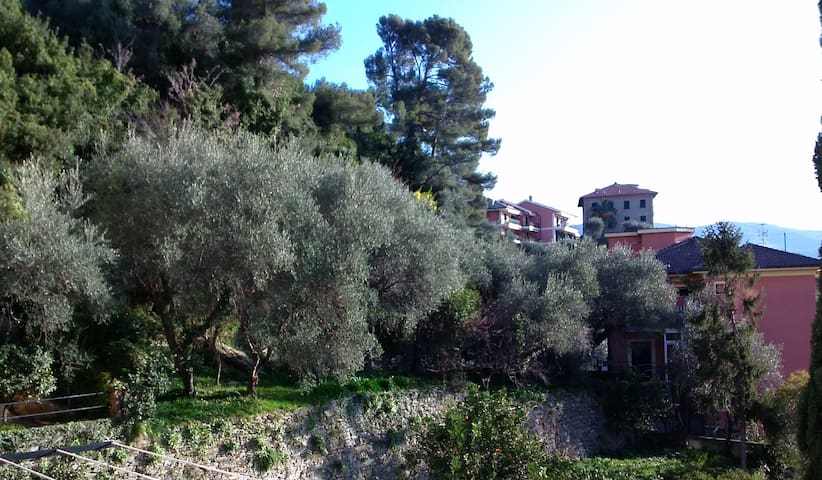 Nel cuore della Riviera Ligure - Chiavari - Byt