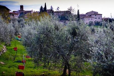 Casa Patrizia - Rietine - Talo
