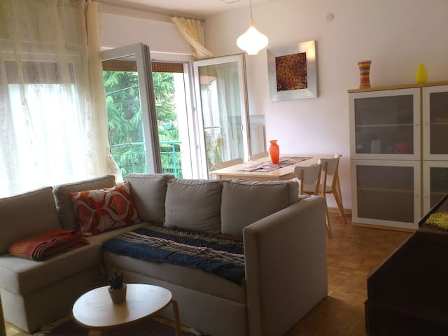 Charming flat in Belluno - Belluno - Apartment