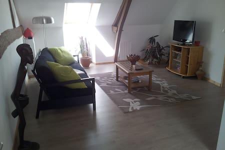 Appartement gîte saisonnier - Chauvigné - Apartament