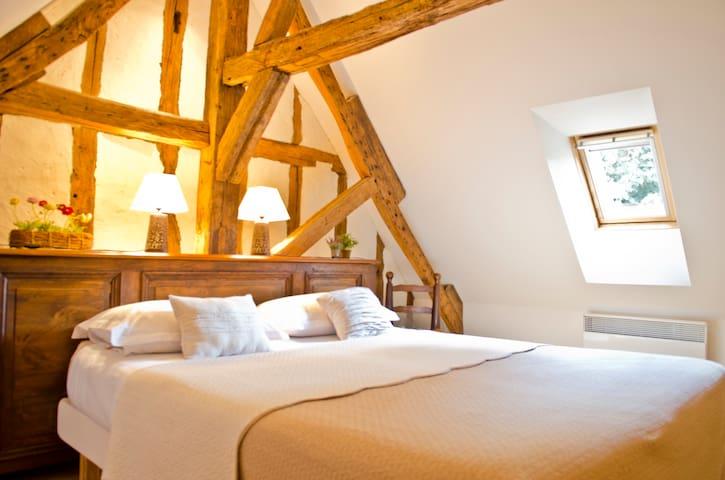 la HERAUDIERE 1 - chambre Vinci - Tours - Bed & Breakfast