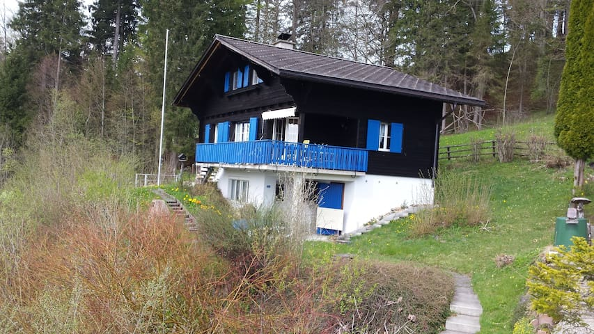 Ferienhaus mit Seeblick - Einsiedeln - Dom