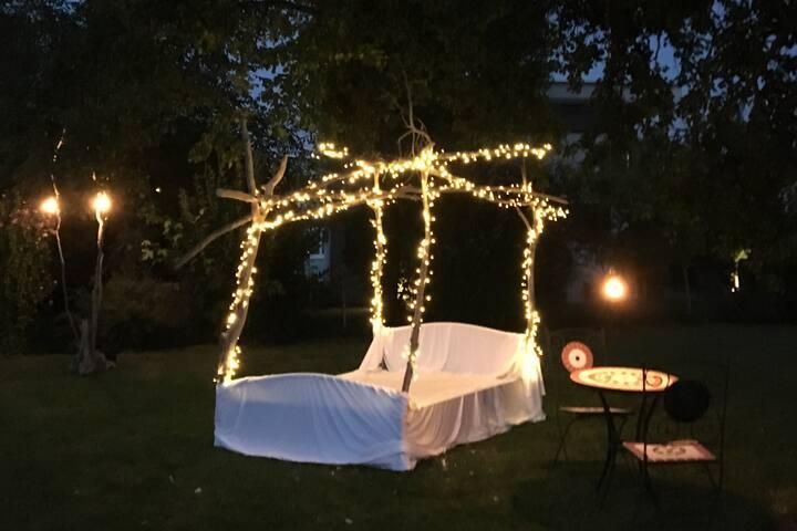 The Open Sky - Garden