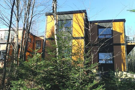 Lake Front Modern House - Mille-Isles - Chalet