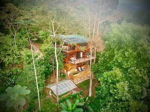 The Fusion Home | Award Winning Treetop Paradise!