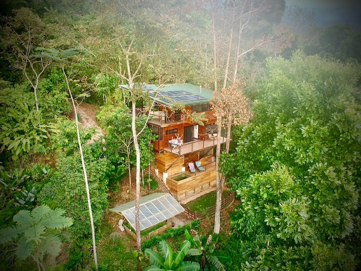The Fusion Home | Award Winning Treetop Paradise!