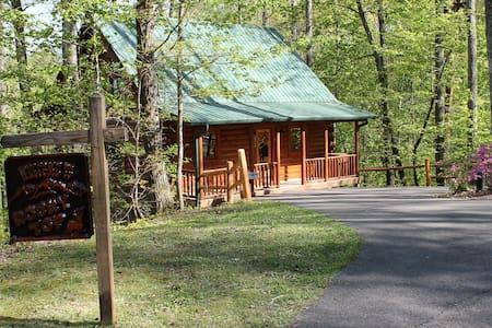 Mountain View, Wi-Fi, Privacy - Gatlinburg