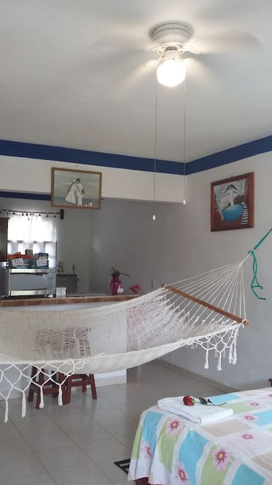 Room 4 is on the secund floor with an amazing view of the garden ,there is a king size bed,A/c, 2 ceilling fans ,hammock,micowave,fridge,stove and gas,dishes and silverware. is spacious and has a nice balcony with an amazing view of the garden.