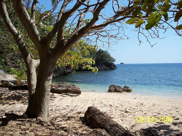 Beach House in a Private Cove - Sipalay City - Dům