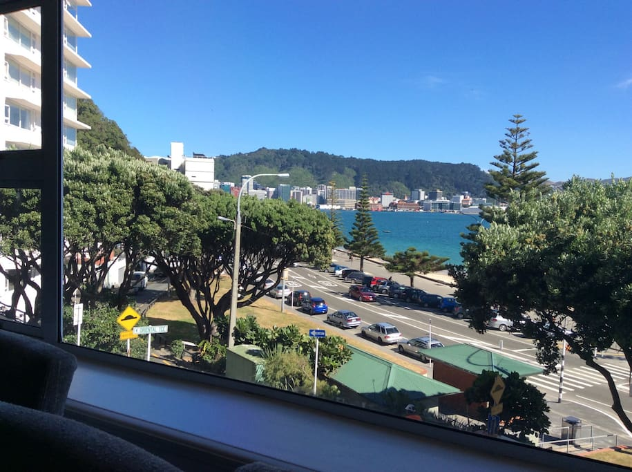 The view from our front window towards the heart of Wellington